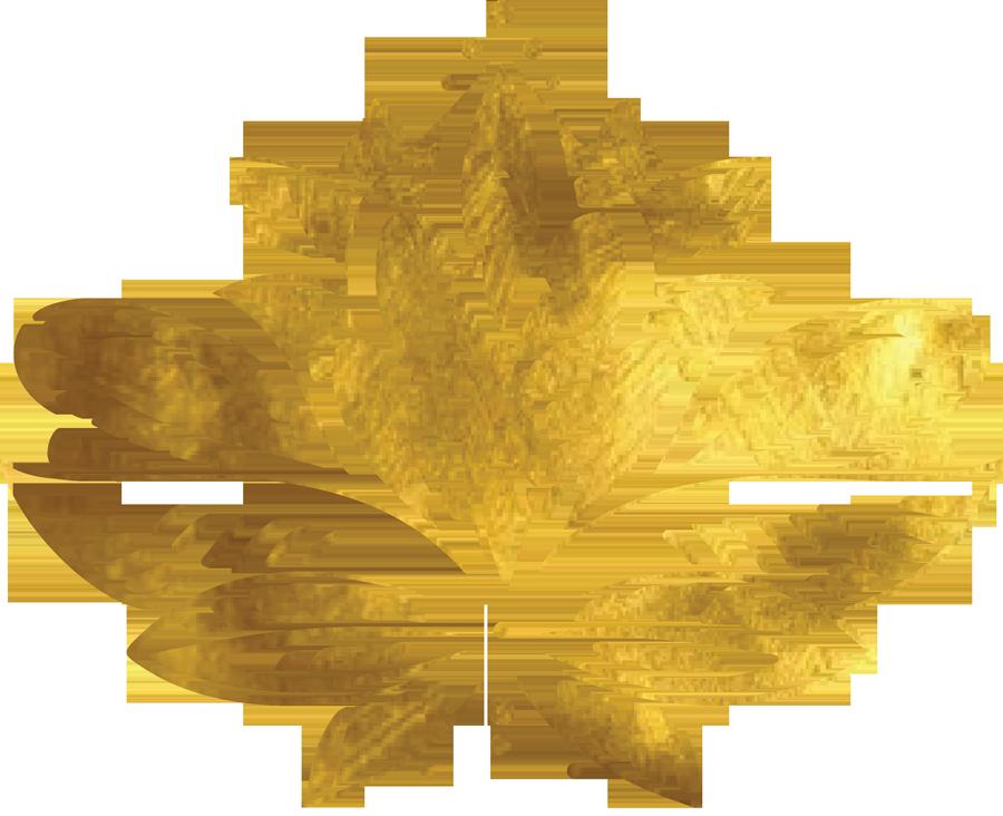 Lotusblüte symbolisch